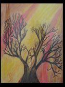 Kahler Baum vor wärmenden Sonnenstrahlen